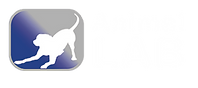 animal lab iconos-11.png