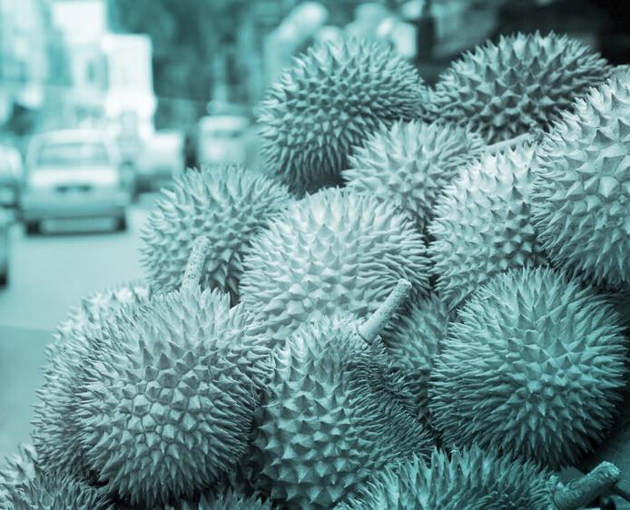 日本への食品(くだもの等)・植物類の持ち込みについて