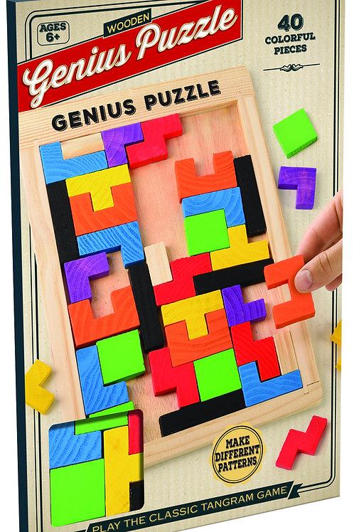 Genius Wooden Puzzle