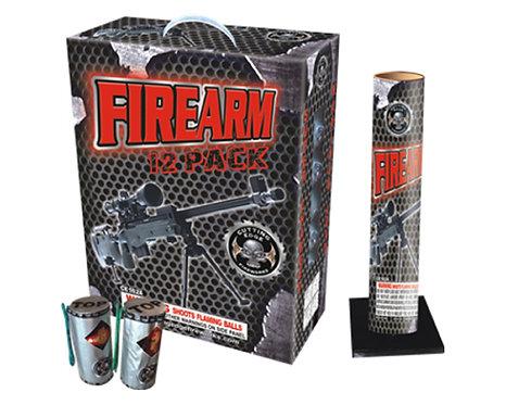 Firearm Artillery Shells