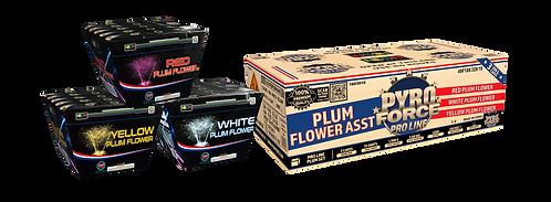 Pro Line Plum Case Assortment