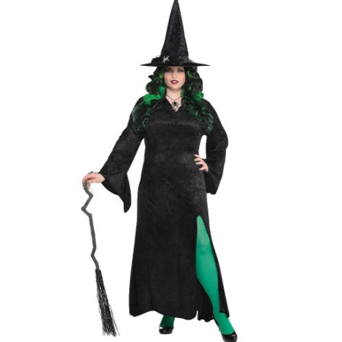 Basic Witch Women's Plus Costume