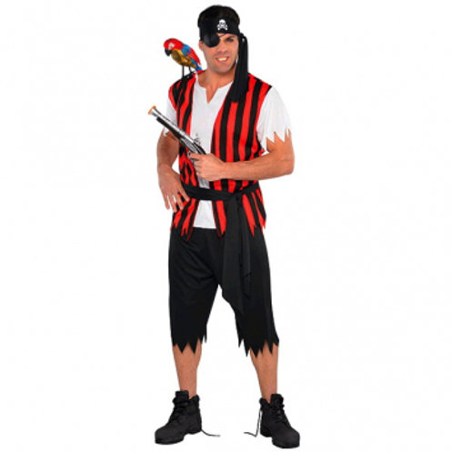 Standard Pirate Men's Costume