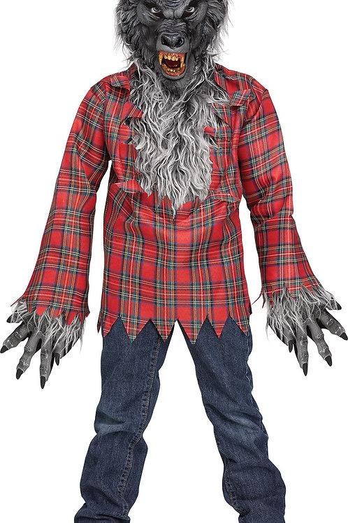 Grey Werewolf Boy's Costume
