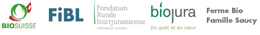 Logos-Organisatoren_neu.png