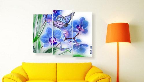 Plava orhideja