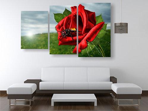 Crvena ruza 2