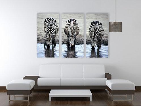 Tri zebre