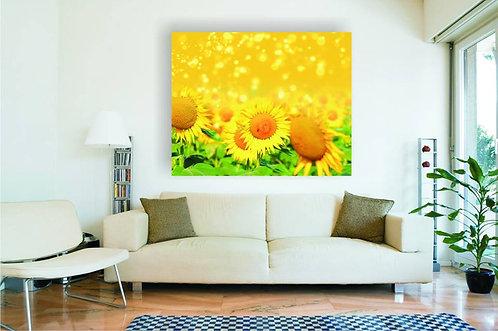 Cvet suncokreta