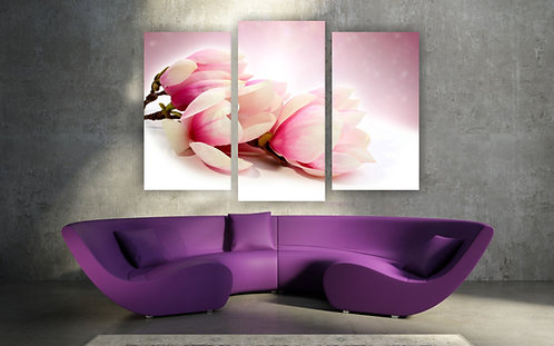 Magnolija cvetovi