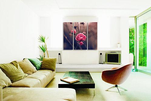 Divlja ruža