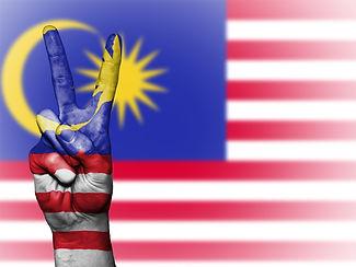 malaysia-2131286_1920.jpg