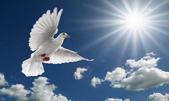 holy-spirit.png