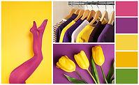 s.h.a.c.e colour theory for designers course