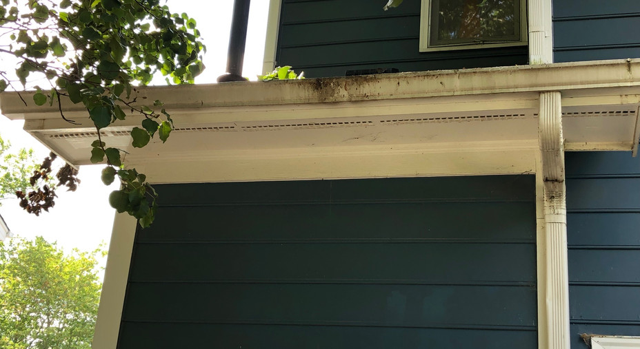 Gutter Cleaning: Before