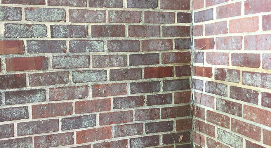Power Washing Brick: Before