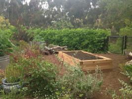 Culinery Garden Design