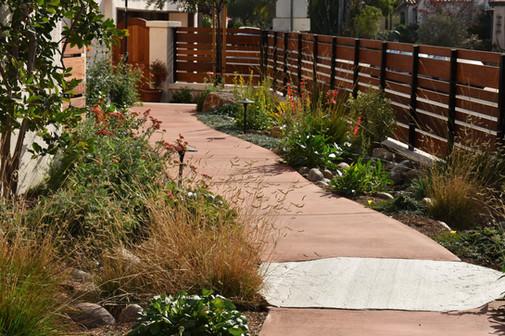 Natural Concete Pathway Design