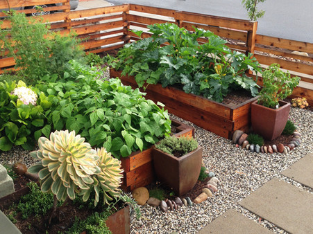 Beautiful Raised Bed Vegetable Garden Design in Mission Hills