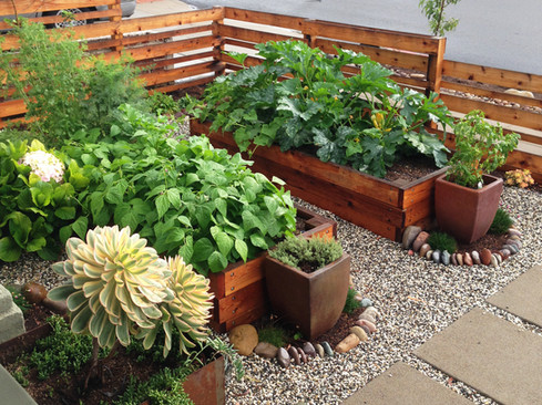 Beautiful Raised Bed Vegetable Garden Design in Mission Hills