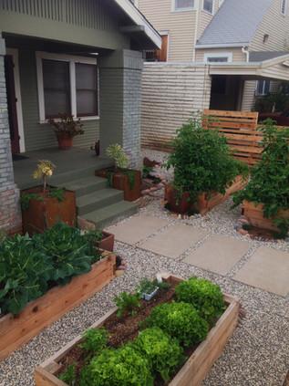 Vegetable Garden Design in Mission Hills