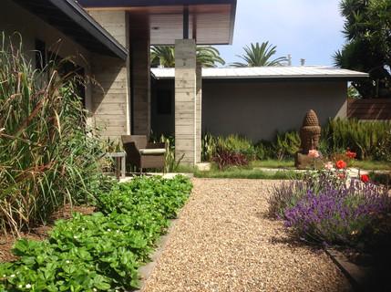 Tranquil Landscape Design in Leucadia