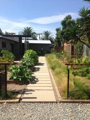 Landscape Design in Leucadia