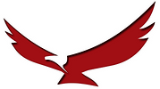 Two-Hawks-Consulting-Hawk1.png