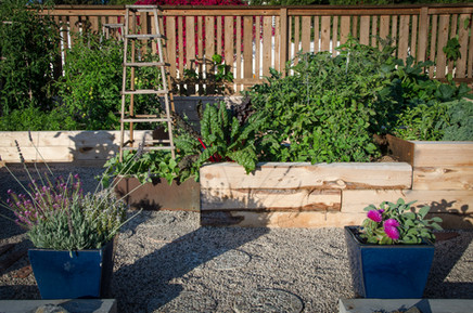 Vegetable Garden Design San Diego