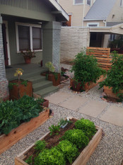 Vegetable Gardens in Frontyard of Home