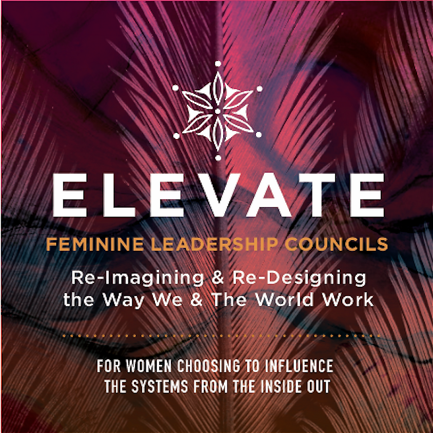 An Evening with Elevate