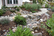 Rainwater Collection System in San Diego