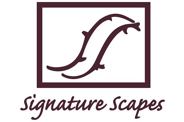 Signaturescapes