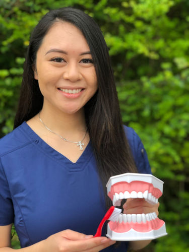 dental hygiene pearland