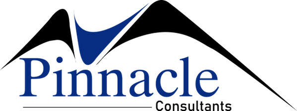 Pinnacle Consultant Logo BLACK.png