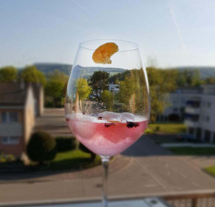 Gin & Tonic in einen Weinglas mit Zitronenezeste und Gewürzen mit Aussicht