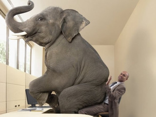 The elephant in the room thats destroying your health