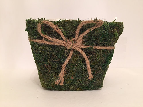 MOSS CONTAINER -LARGE-