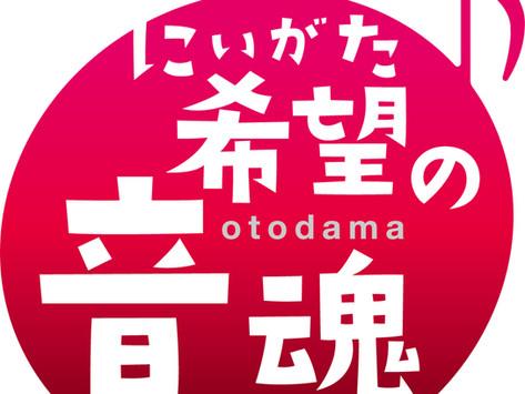 11/14(日)苗場プリンスホテル「にいがた 希望の音魂(OTODAMA)」プロジェクトNAEBA LIVE『ロック オン!苗場』