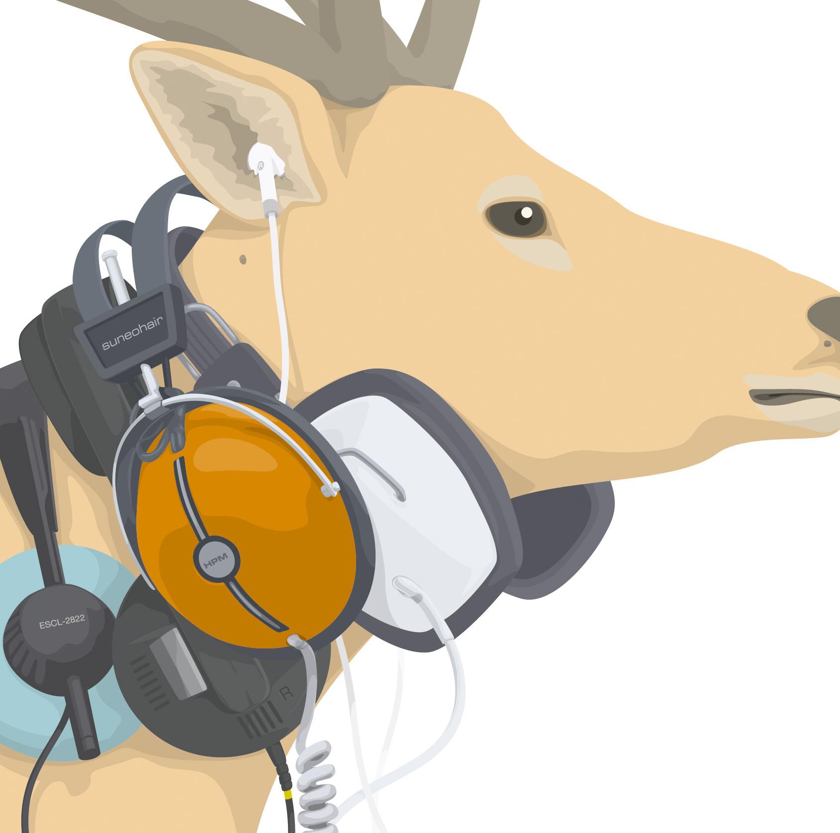 headphone music ESCL02822