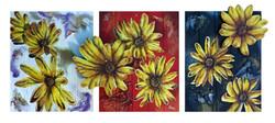 """Moonflowers"""