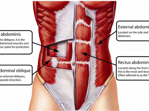 The Ultimate Cheat Sheet For Back Pain (Part 1).