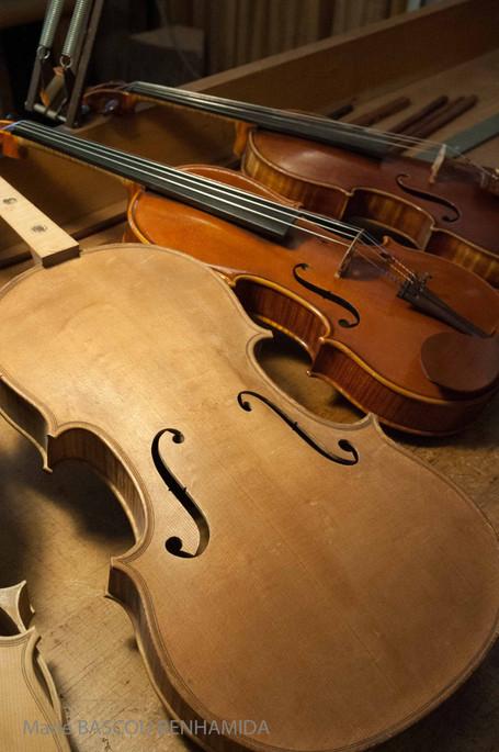 Photo violon Montpellier