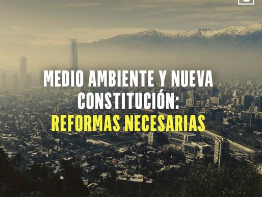 Medio Ambiente y Nueva Constitución: Reformas Necesarias