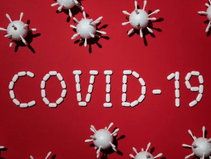 How to take care of your dog amidst the Covid-19 pandemic