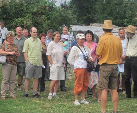 Heti Hirlevel Augusztus 6-7/ Weekly Newsletter August 6-7