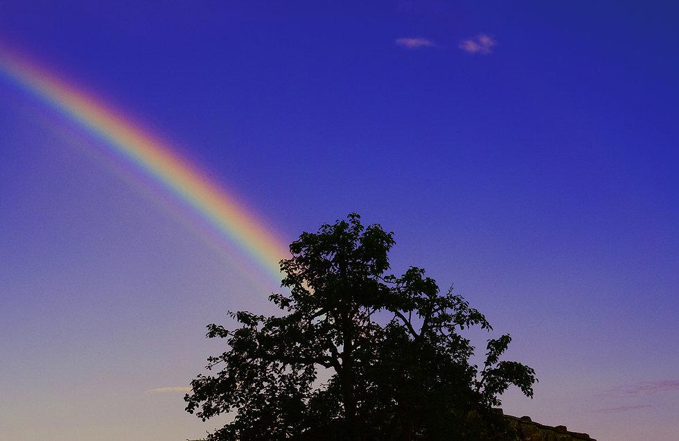 Rainbow_Small.jpg