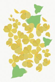 アトリエ_黄色い花.jpg