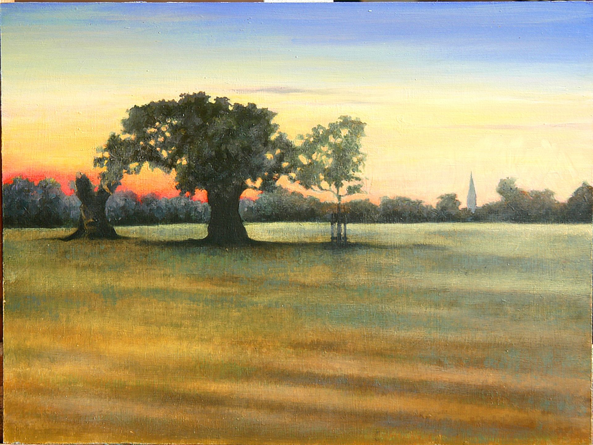 Sunset Richmond Park