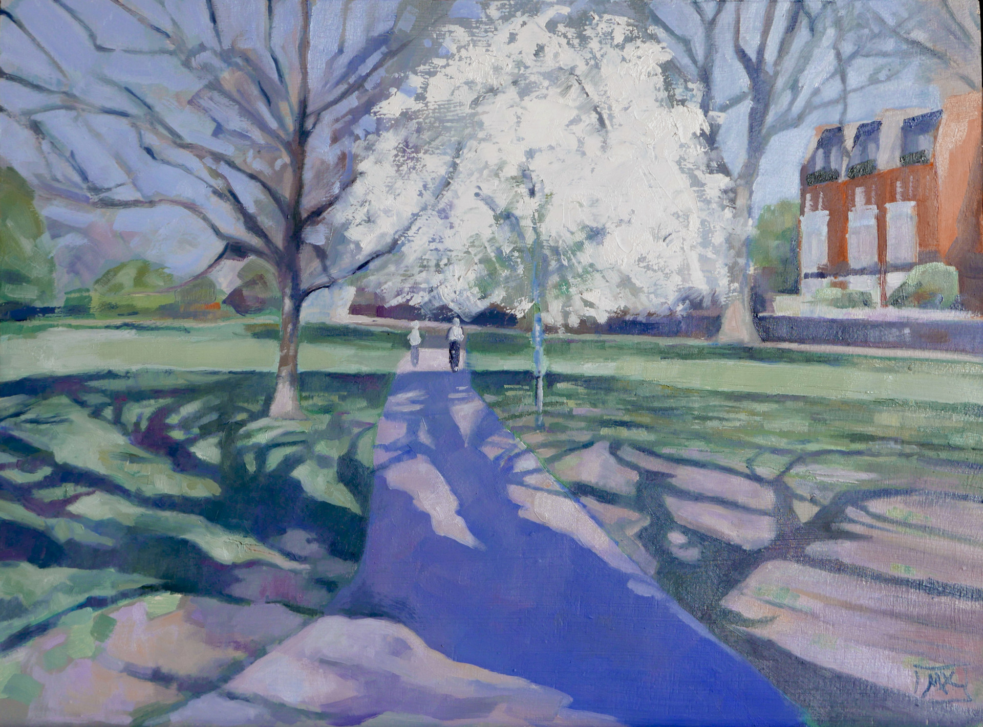 Eel Brook Common Blossom